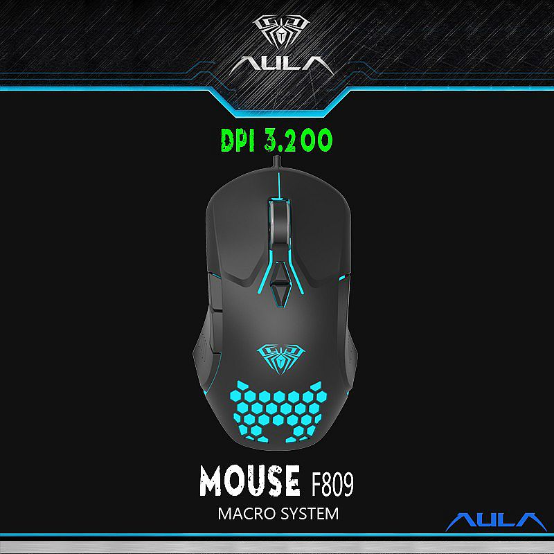 Mouse F 809